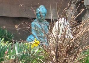 I spy a daffodil!